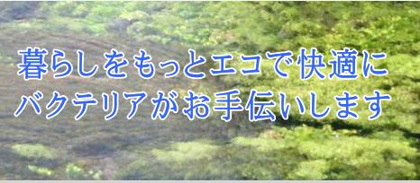 モルゲンロート(企業紹介)